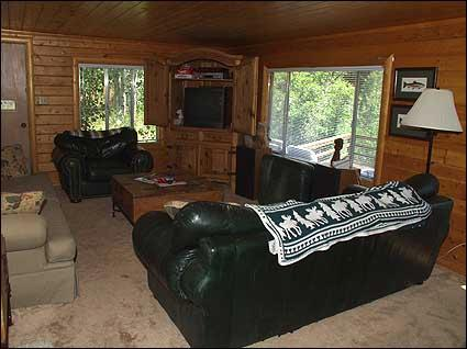 Comfortable Living Room with Leather Couches - Riverside Home - Woody Creek Area (2642) - Aspen - rentals