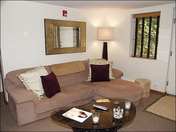Cozy Living Room with Wood Burning Fireplace - 2 1/2 Blocks From Gondola - Convenient and Quiet (2643) - Aspen - rentals