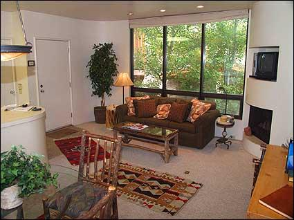 Modern living room with gas fireplace - Aspen Townhouse - Walk to lifts (3303) - Aspen - rentals