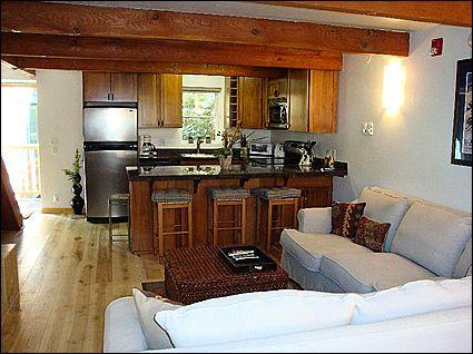 Open Living Area - Newly Remodeled Gem - 2 1/2 blocks to gondola (8493) - Aspen - rentals
