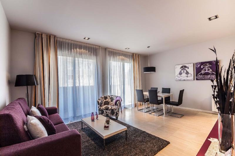 Living Area - 2 bedroom apartment in heart of Barcelona - Barcelona - rentals