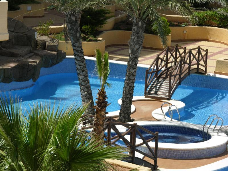 Sea and Pool View Apartments- Indoor and Outdoor Pool - Parking - 2405 - Image 1 - Playa Honda - rentals