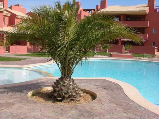 Large Balcony - Community Pool - Satellite TV - 4905 - Image 1 - Mar de Cristal - rentals