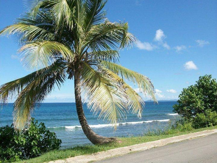 View from the street - Bravos Sun and Sea Upper Guesthouse - Isla de Vieques - rentals