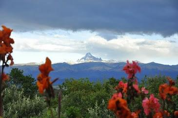 Mt Kenya with blooms - Laikipia  Mt. Kenya View vacation home rental - Laikipia - rentals