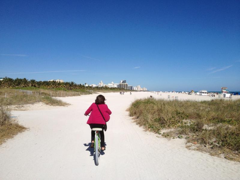 2 Beach Cruiser bikes included - The building has direct access to beach. Only a handful do. - ON BEACH SOFI South Beach 1 Br Ocean Side +++ - Miami Beach - rentals