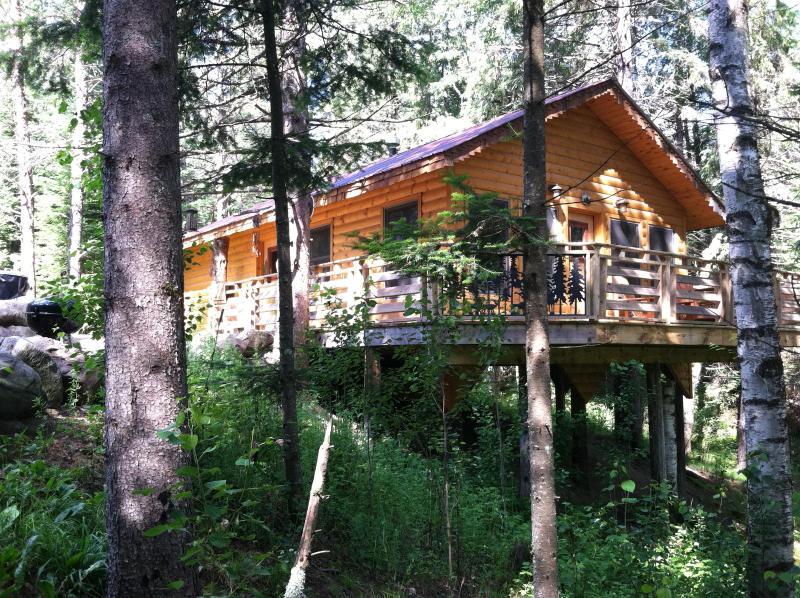 "Cabin Eleanor - Forest Cabin ""Eleanor"" - Shevlin - rentals"