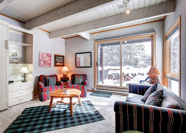 Sundowner Studio Living Room Breckenridge Condo Rentals - Sundowner T2 Ski-in Condo Downtown Breckenridge Vacation Rentals - Breckenridge - rentals