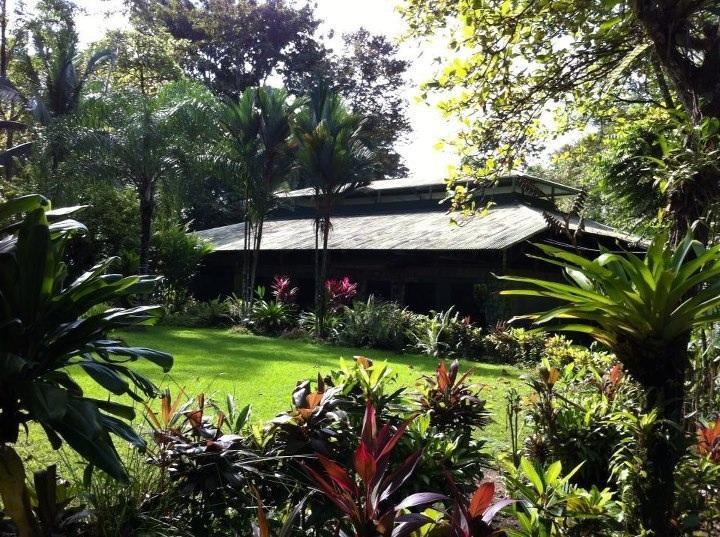 La Choza del Manglar, Main Lounge - Chosa del Manglar Puerto Jimenez OSA Peninsula - Puerto Jimenez - rentals