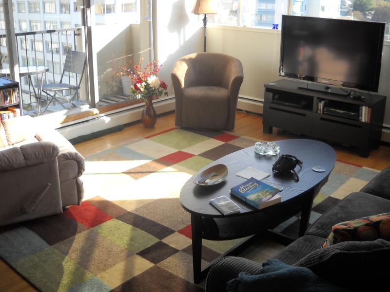 Nice bright living room with great views! - BEST LOCATION & BEST PRICE IN HEART OF WEST END!! - Vancouver - rentals