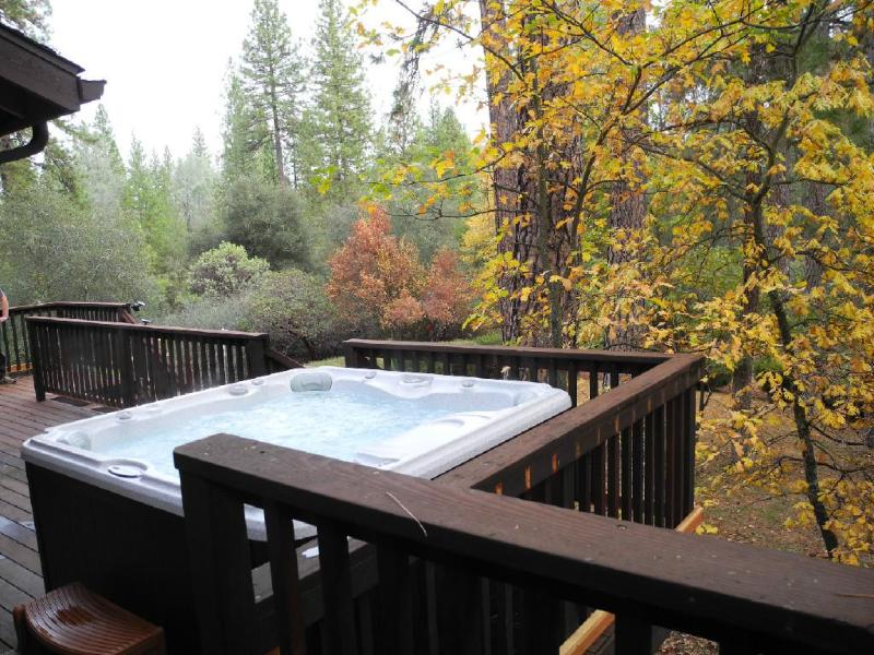 A spa with a view - Knarly Oaks Midpines Manor, spa, decks,3000 sq ft, - Yosemite National Park - rentals