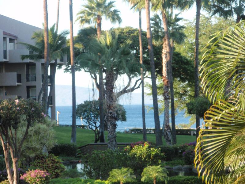 Kamaole Sands has 15 acres of gardens, water features,  making this a perfect Maui resort property - Kamaole Sands 2-107 King Ground Floor Lg Lanai POV - Kihei - rentals