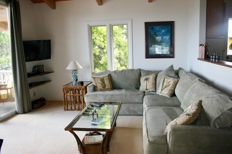 Cozy livingroom - Cozy Large 1bdrm 1bath aprt - Kailua - rentals