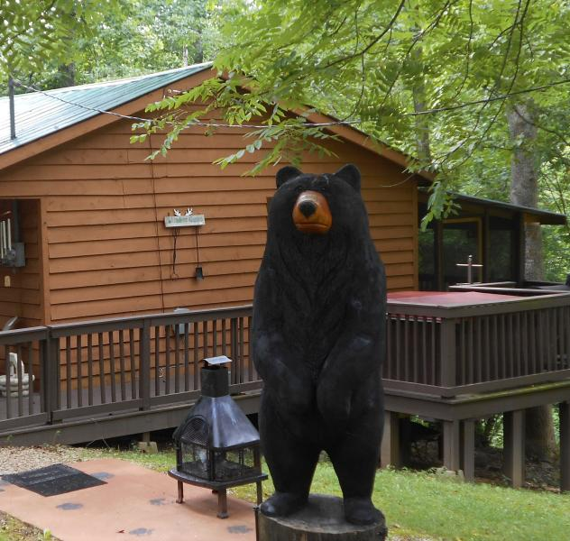 Whistling Woods Cabin Rental, LLC - Image 1 - Morehead - rentals
