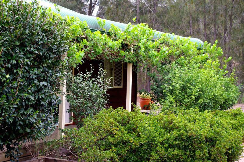 Cottage - Misty Glen Cottage Hunter Valley Wine Country - Pokolbin - rentals