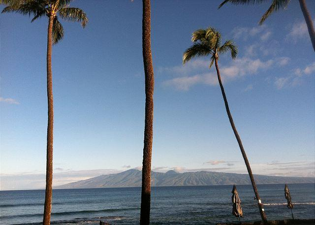 Hale Kai # 213 - Find Your Bliss in Paradise in our newly renovated Oceanfront Condo - Lahaina - rentals