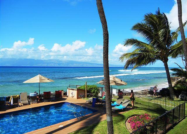 Hale Kai #216 - Find Your Ocean Paradise in our Direct Oceanfront Condo with Majestic Views! - Lahaina - rentals