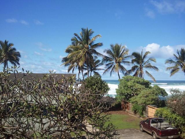 Your ocean view - Papaya, plumeria & ocean views: North Shore O'ahu - Haleiwa - rentals