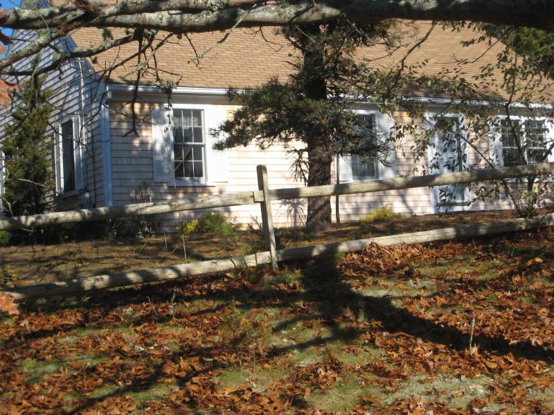 Sunny Wooded Setting - Serene Setting Chatham, 1/2mi. to beach, Wireless - Chatham - rentals
