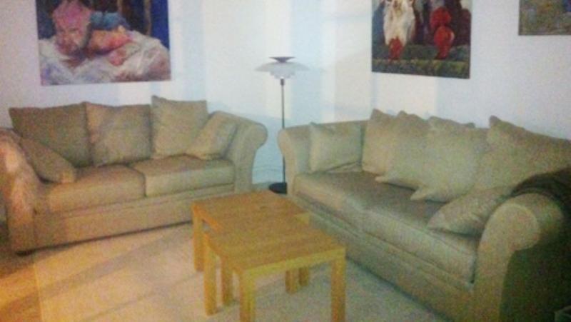 Nordlandsgade Apartment - Copenhagen apartement close to Christianhavns square - Copenhagen - rentals