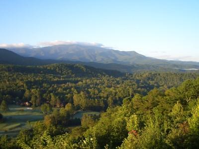 2 BR C101 Condo Updated! - Image 1 - Gatlinburg - rentals