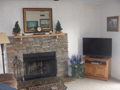 1 BR Condo Nicely Furnished C202 - Image 1 - Gatlinburg - rentals