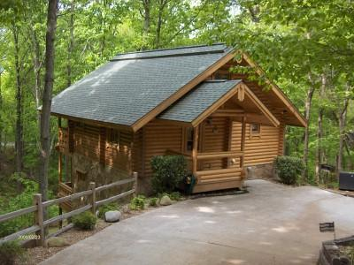Old Glory Cabin - Image 1 - Gatlinburg - rentals