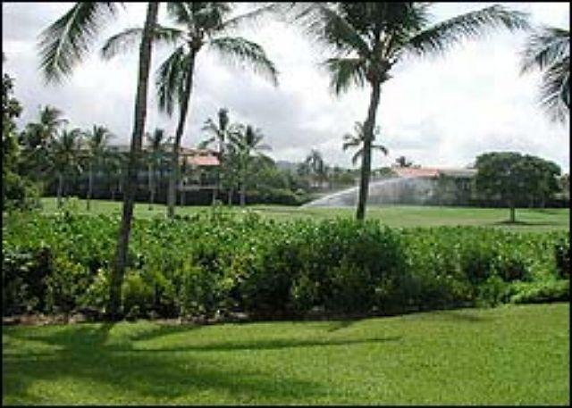Keauhou Kona Surf & Racquet 7103   2b/r oceanfront complex Kona Hawaii - Image 1 - Kailua-Kona - rentals