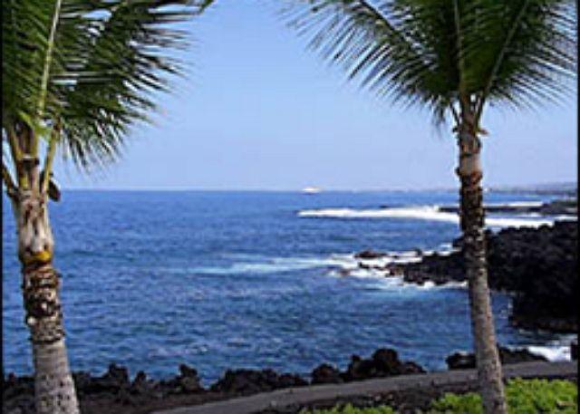 Keauhou Kona Surf & Racquet 4204 2 b/r oceanfront Kona Hawaii - Image 1 - Kailua-Kona - rentals