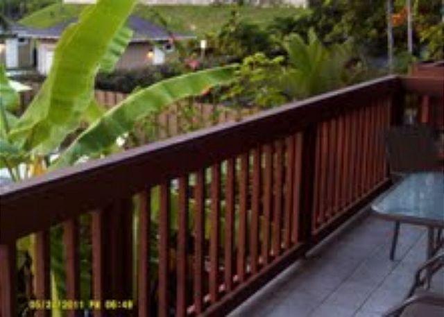 Garden views from lanai - Lunapule Kona 205 2 b/r Affordable condo great location Kona Hawaii - Kailua-Kona - rentals