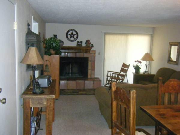 Living Room Includes a Sleeper Sofa and Wood-Burning Fireplace - Inviting Chateaux Condominium - Easy Access to Downtown (1243) - Crested Butte - rentals