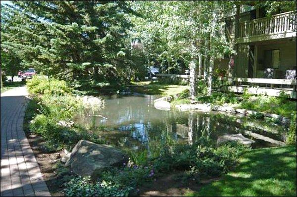 Serene Natural Setting - Mountain Views - Ice-Rink and Pavilion Across the Street (1015) - Ketchum - rentals