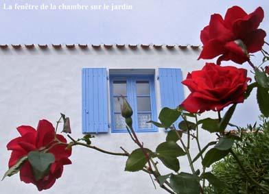 ISLE OF YEU (FRANCE)-South of Brittany-House for 6 - Image 1 - Vendee - rentals