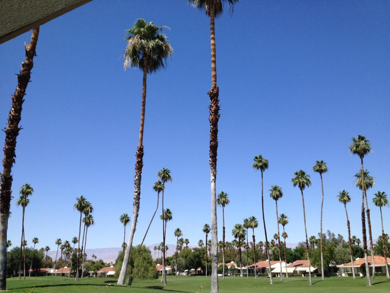 View of golf course from back patio - Unwind in a Relaxing Rancho Mirage Vacation Home - Rancho Mirage - rentals