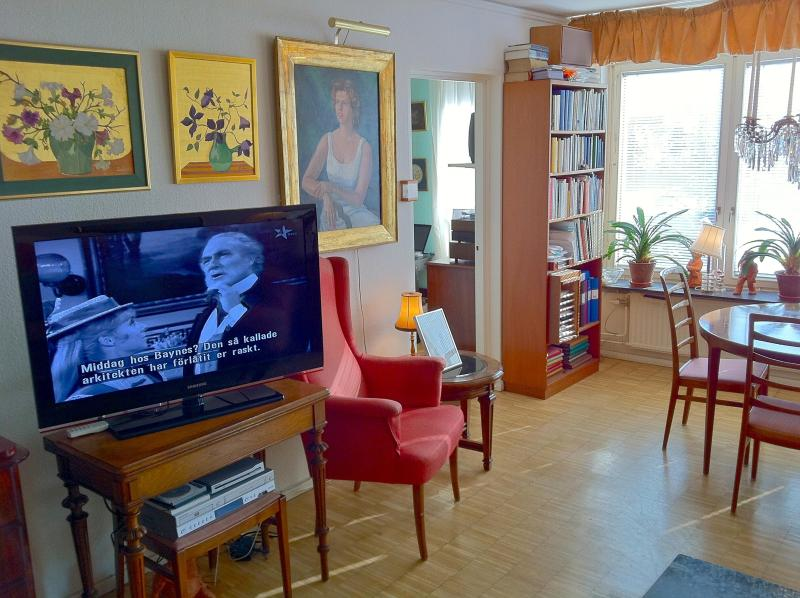 Living room - The Oriental Room in a large Apartment, Södermalm - Stockholm - rentals