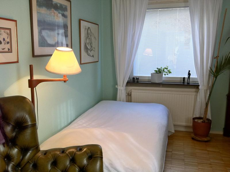 Oriental room - The Oriental Room in a large Apartment, Södermalm - Stockholm - rentals