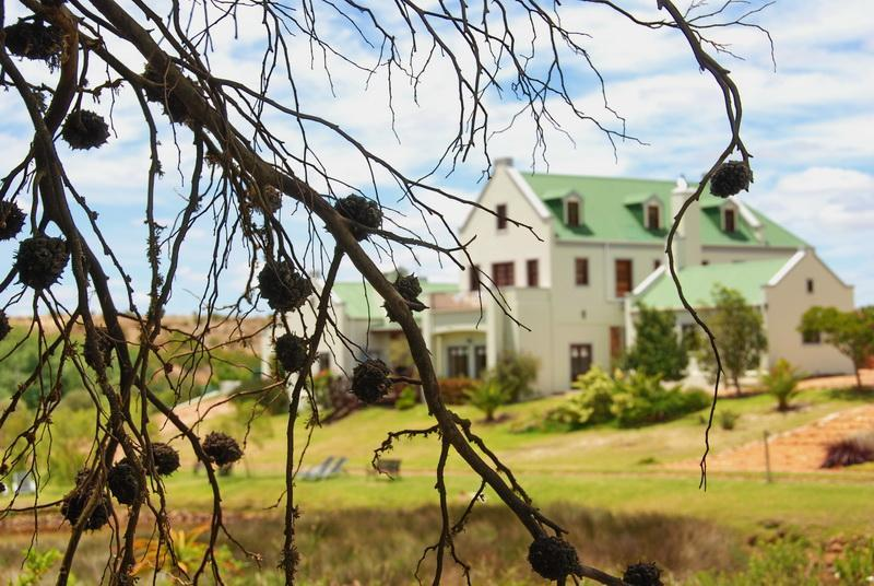 Peace Valley Guesthouse - Napier - Western Cape - 4* TGCSA accredited B&B accommodation - Peace Valley Guesthouse - Napier Western Cape RSA - Napier - rentals