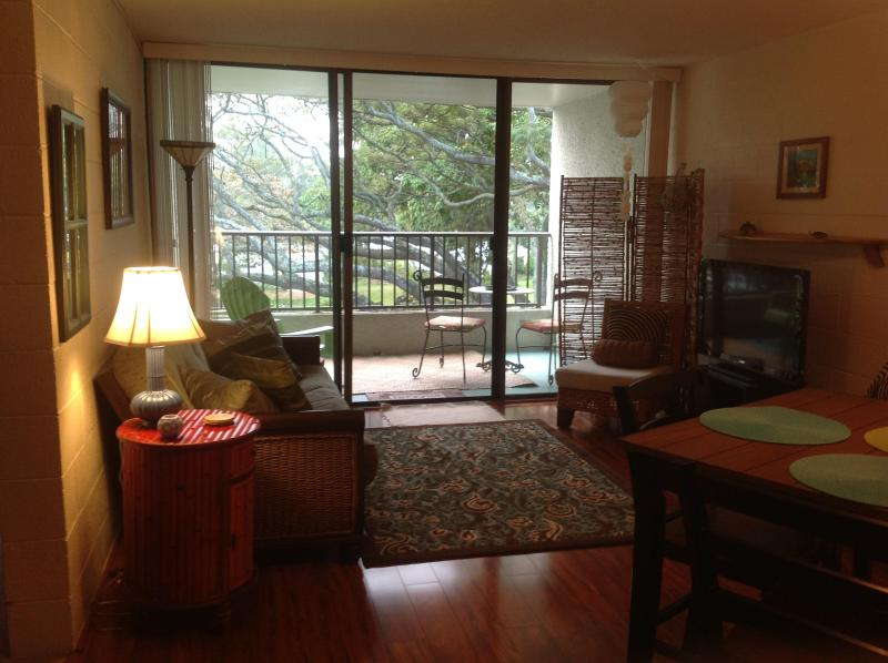 Living with a view! - Oceanfront condo, swim with resident sea turtles! - Hilo - rentals