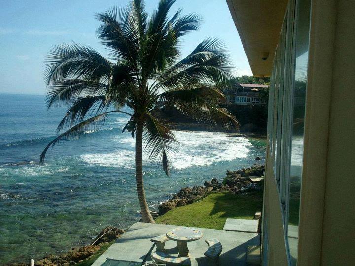 Ocean Front Villa - Image 1 - Dorado - rentals