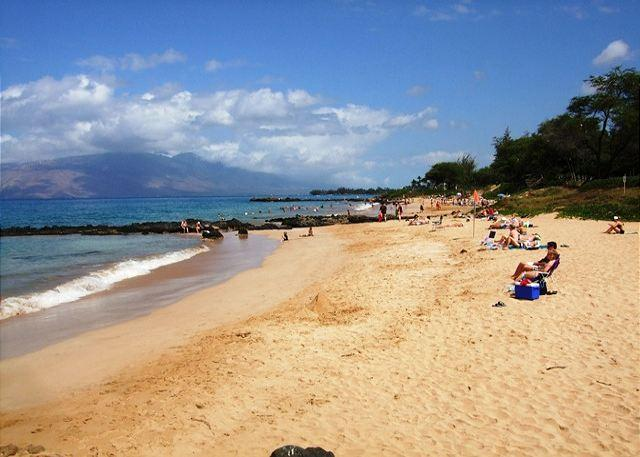Kamaole Sands Beach lll Right Across From Kamaole Sands - Kamaole Sands #5103  Private 1 Bd 2 Bath Condo Inner Court Sleeps 4 - Kihei - rentals