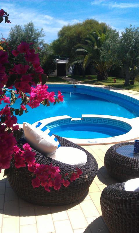 Richard's villa 8pax - Image 1 - Albufeira - rentals