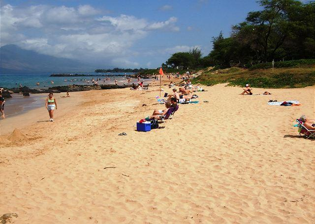 Kamaole Beach #3 directly across from Kamaole Beach #3 - Maui Parkshore #215 - Ocean view, Remodeled 2/2. $120 Spring/Summer Special! - Kihei - rentals