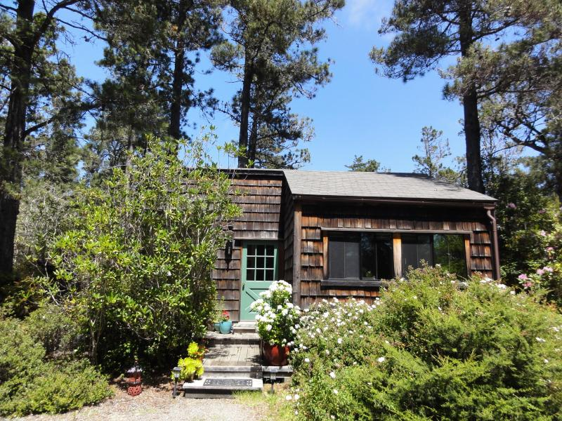 charming private Caspar Cottage - Caspar Cottage charming private Mendocino rental - Mendocino - rentals