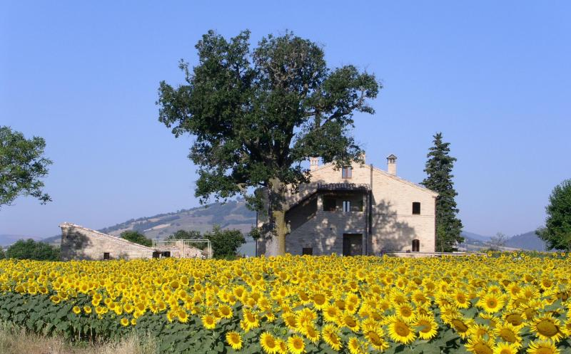 La Casa degli Amori - Special B&B in great location for exploring Marche - Treia - rentals