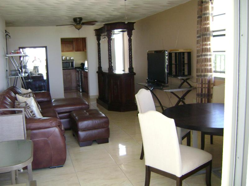 Spacious Living Area - The Iguaca's Nest, Luxurious High Rise In San Juan - San Juan - rentals