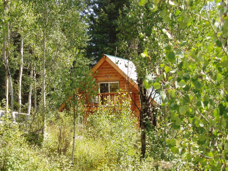 Aspen Chalet - Surrounded by Aspen Trees and Woods - Image 1 - Pagosa Springs - rentals