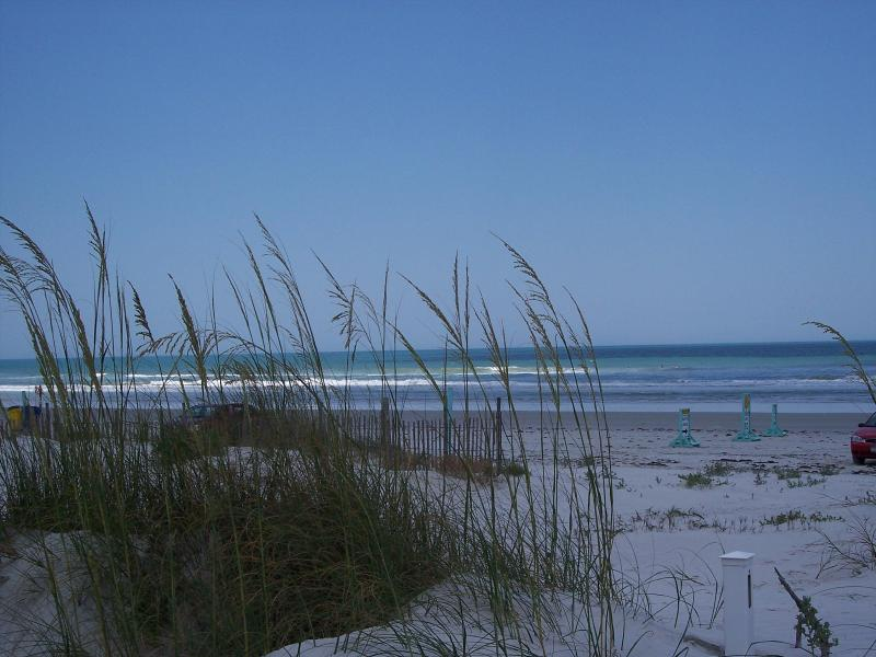 Solitude from back deck - Summertime fun on New Smyrna Beach - New Smyrna Beach - rentals