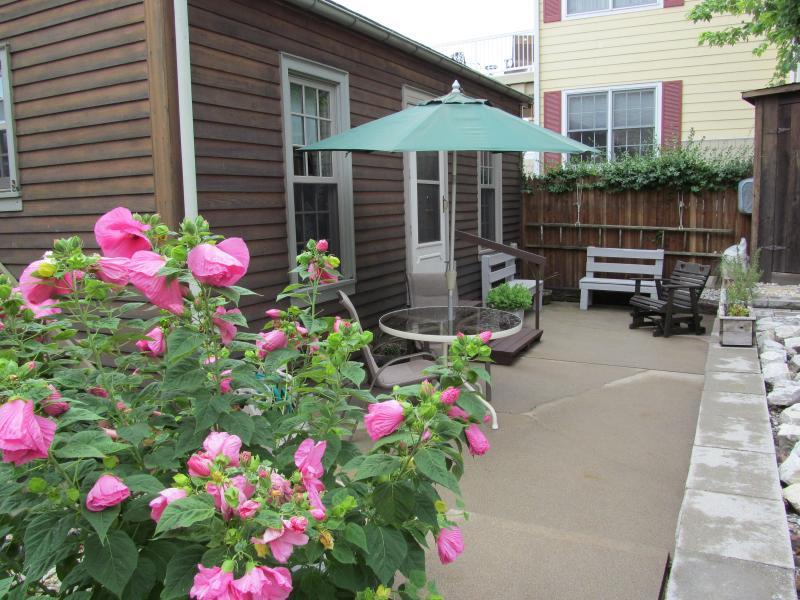 Back Patio Area - Cabin on the Ohio River, Rising Sun, Indiana - Rising Sun - rentals