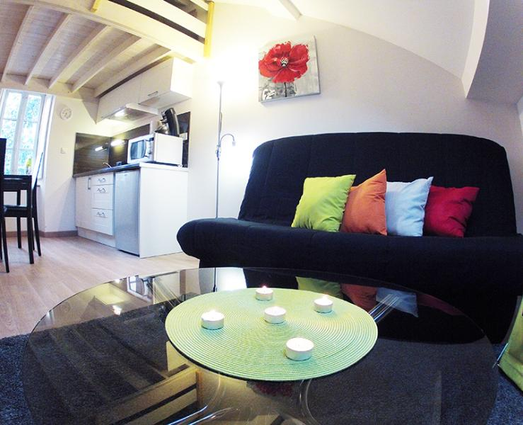Very nice apartment center of Nantes - Image 1 - Nantes - rentals