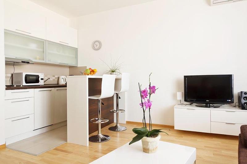 Cozy DOWNTOWN Studio SATIN with PARKING! - Image 1 - Belgrade - rentals